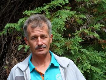 Tibi100 53 éves társkereső profilképe