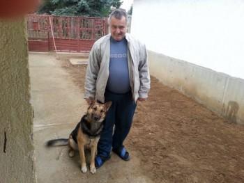 baltazar 64 éves társkereső profilképe