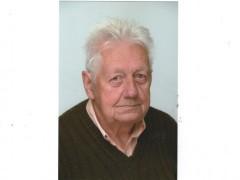 dranikferenc - 80 éves társkereső fotója