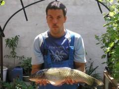 fett - 31 éves társkereső fotója