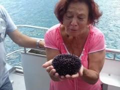 Szász Erzsébet - 67 éves társkereső fotója