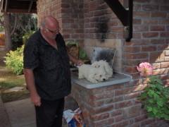 Lököm - 67 éves társkereső fotója