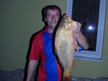 tibidi 49 éves társkereső profilképe