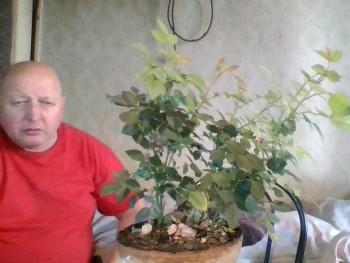 pipas 62 éves társkereső profilképe