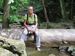 Kedves Ember - 73 éves társkereső fotója