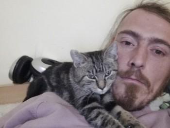 macska társkereső)
