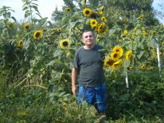 Belamiker - 52 éves társkereső fotója