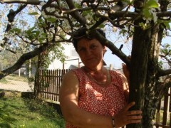 Valcsika - 55 éves társkereső fotója