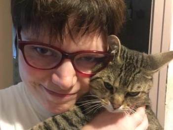 társkereső és macska mennyi az én városom társkereső