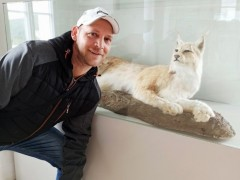 Krisztian790 - 42 éves társkereső fotója