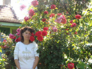 Helén 45 éves társkereső profilképe