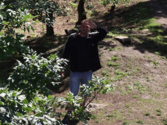 Csaba 39 - 39 éves társkereső fotója